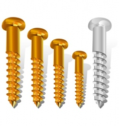 construction screws vector image