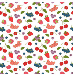 outline hand drawn color seamless berry pattern vector image
