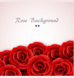 Red roses background rose cover for wedding vector