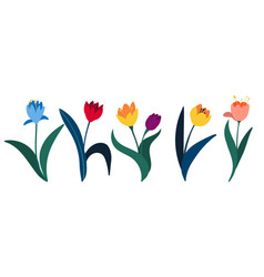 set colorful tulips in flat style isolated vector image