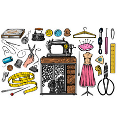 set sewing tools and elements or materials vector image