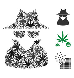 spy collage of cannabis vector image