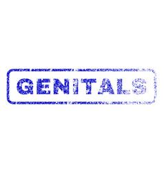 genitals rubber stamp vector image