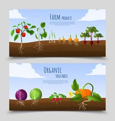 healthy food horizontal banners vector image