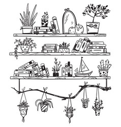 Hand drawn bookshelves with books houseplants and vector