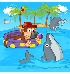 Monkey photograph dolphins vector