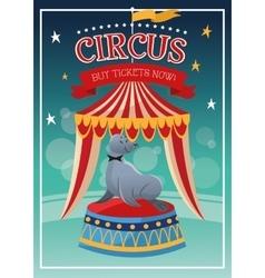 Seal cartoon of circus vector