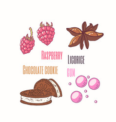 sweet toppings anise raspberry cookie vector image