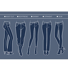 Women denim fits vector image