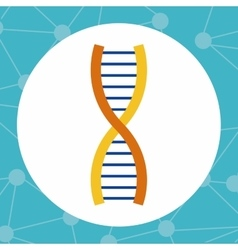 Colorful dna and science design vector image vector image