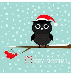 Black owl in Santa Claus hat Cute cartoon vector