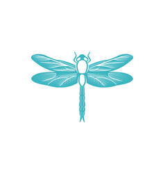 Butterfly logo designs inspiration isolated on vector