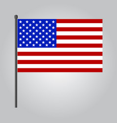 flat design usa flag icon vector image