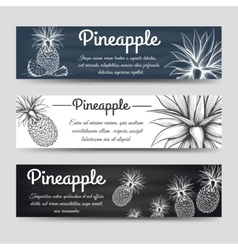 Horizontal banners template with pineapple vector