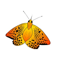 Simple orange butterfly on the white vector