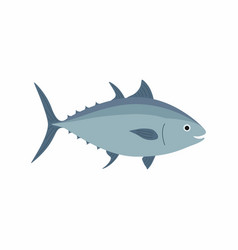 tuna fish isolated on white vector image