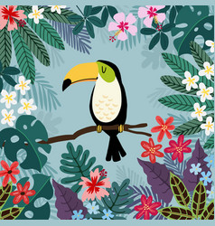 summer tropical background toucan bird with palm vector image
