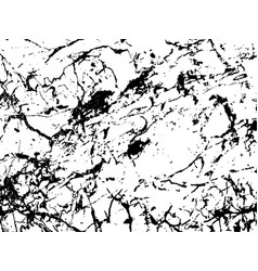 black and white marbling texture design for poster vector image