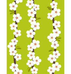Cherry blossom - seamless pattern vector