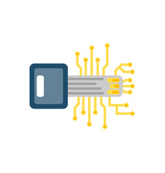 digital key flat icon vector image