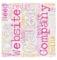 Make Money Sell Credit Cards text background vector image vector image