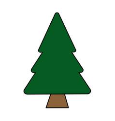 colorful image cartoon pine tree vector image vector image