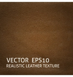 Brown leather background vector image