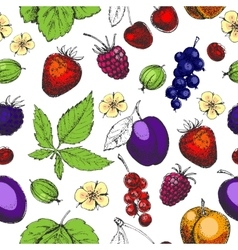 Seamless hand drawn pattern with fruits and vector image