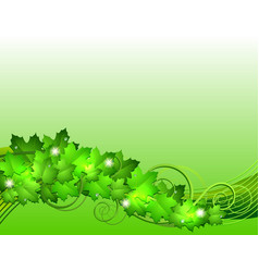 Nature background with green fresh leaves vector image