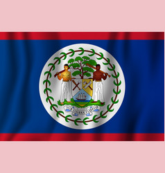 belize realistic waving flag national country vector image