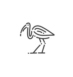 ibis flat outline icon egypt concept vector image
