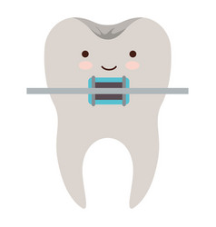 kawaii tooth with root and brace colorful vector image
