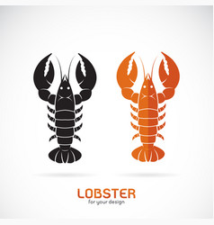 Lobster design on white background sea animal vector