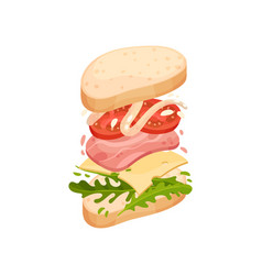 sandwich on an oval piece loaf with ham vector image