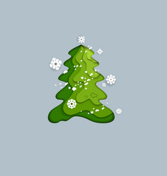 spurce green tree vector image