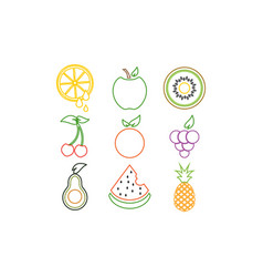 colorful fruit logo icon template vector image