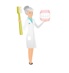 Dentist with dental jaw model and toothbrush vector