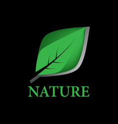 green leaf nature logo vector image