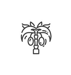palm tree with fruit flat outline icon egypt vector image