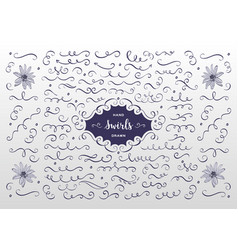 Swirls and flourish collection hand drawn vector
