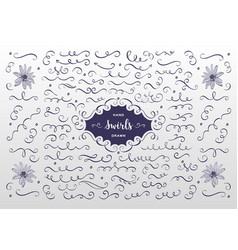 swirls and flourish collection hand drawn vector image