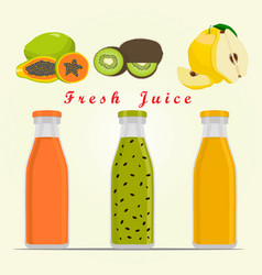 the theme fruit vector image vector image