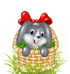 Cute little bunny in a basket with red ribbon vector image vector image