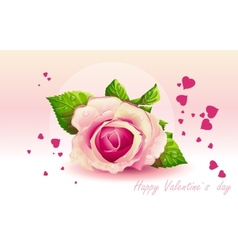 Card for Valentines Day pink rose vector image vector image