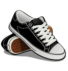 a pair of sneakers with white laces isolated on vector image