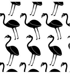 Flamingo bird tropical pattern image vector