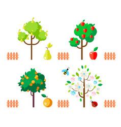 fruit trees apple pear orange flowering tree vector image