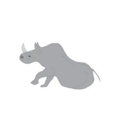 A gray rhino vector