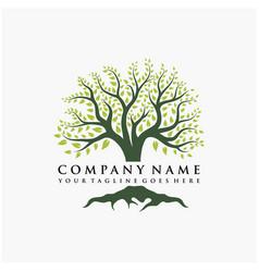Abstract vibrant tree logo design root - tree vector