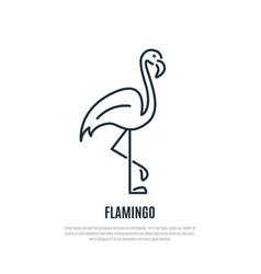 flamingo line icon wild bird symbol liner style vector image